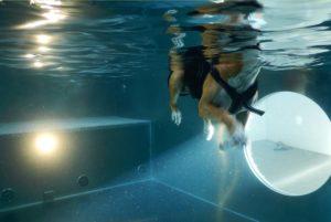 PHYSIObox Hundeschwimmen