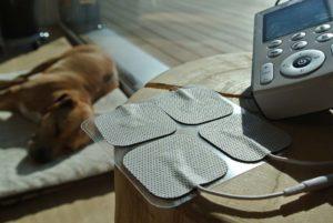 PHYSIObox TENS Therapie für Hunde
