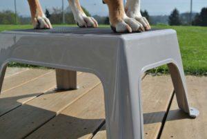 PHYSIObox Verbesserung Gleichgewicht für Hunde